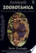 Enciclopedia Zoobotánica (Serie Zoología Lepidoptera-Nymphalidae Fascículo 1)