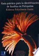 Guía práctica para la identificación de familias de poliquetos