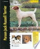Parson Jack Russell Terrier