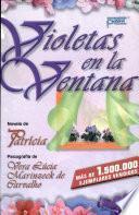 Violetas En La Ventana